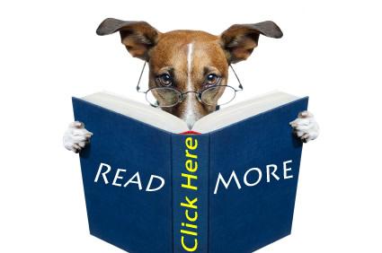 Read_More_Blue_Focus_Marketing