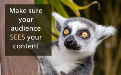 Make sure your audience sees your #content. #contentmarketing #marketing